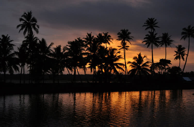 fascinating alleppey backwaters